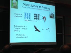 Vicsek Model